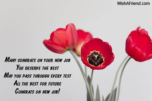 Index of congratulations 12152 congratulations for new jobg altavistaventures Choice Image